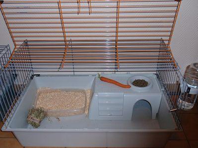 l 39 installation du lapin nain la cage et ses accessoires site d 39 informations sur. Black Bedroom Furniture Sets. Home Design Ideas